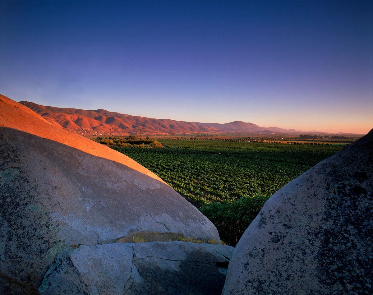 rutas del vino mexicanas