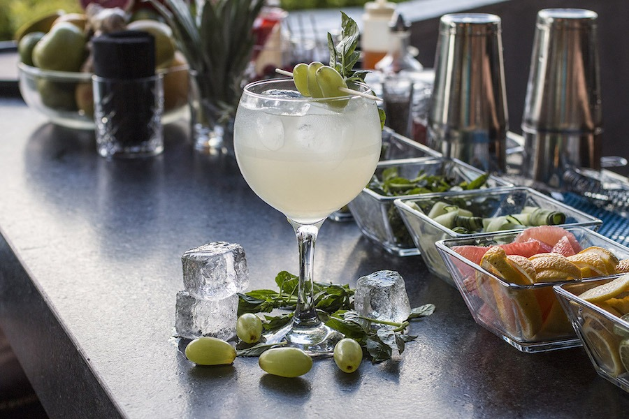 ginebra gin tonic