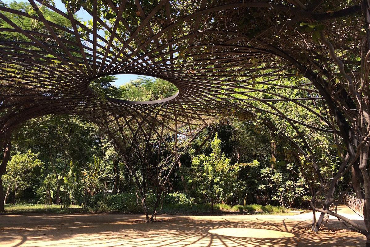 Jardines incre bles que debes visitar en m xico for Jardin botanico el ejido