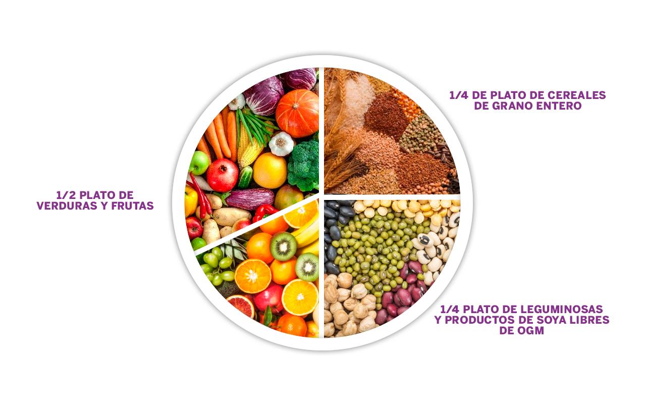 alimentacion de las plantas