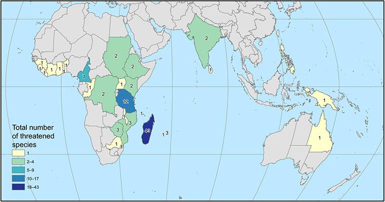 Número total de especies de café amenazadas de extinción por área.