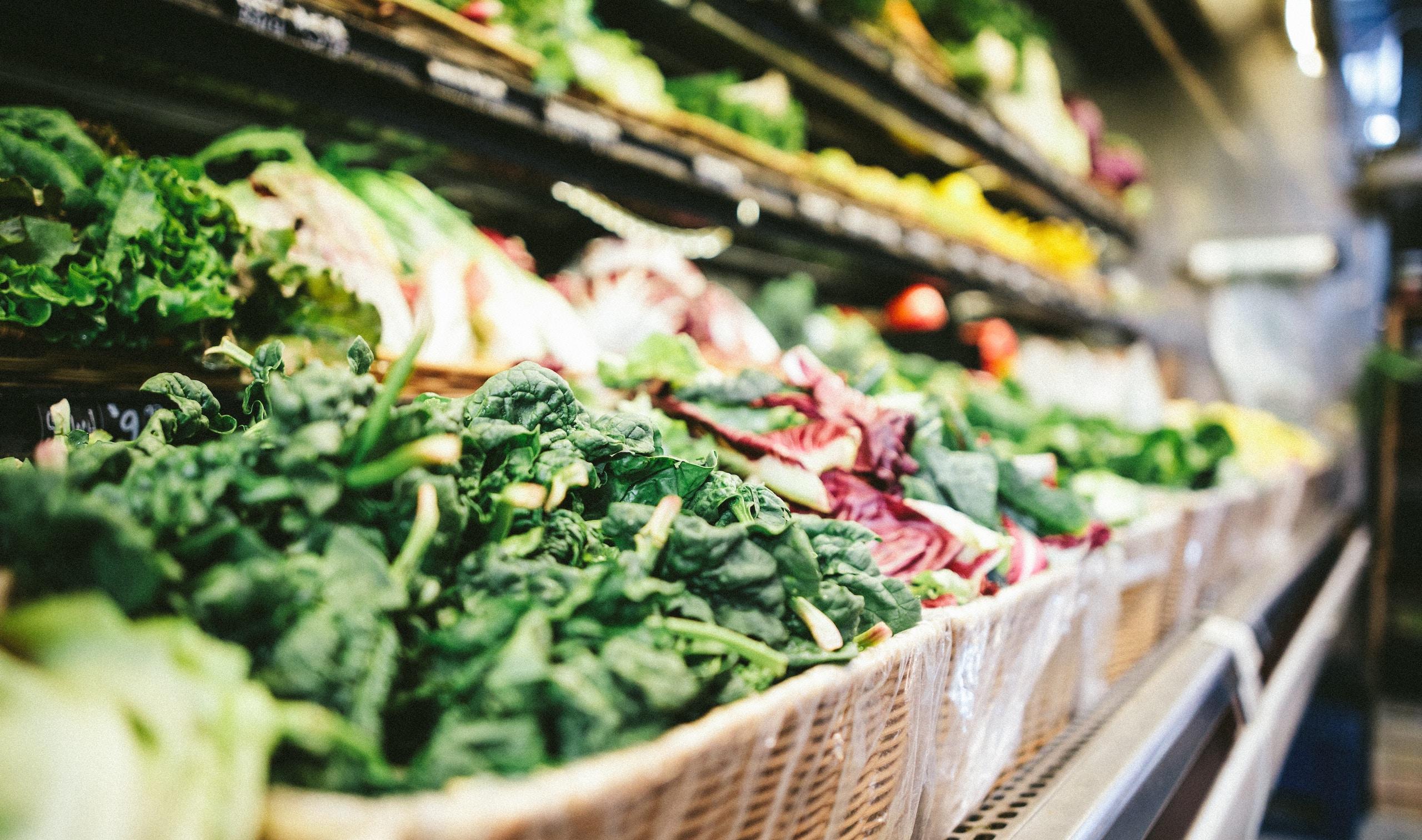 comida a base de plantas