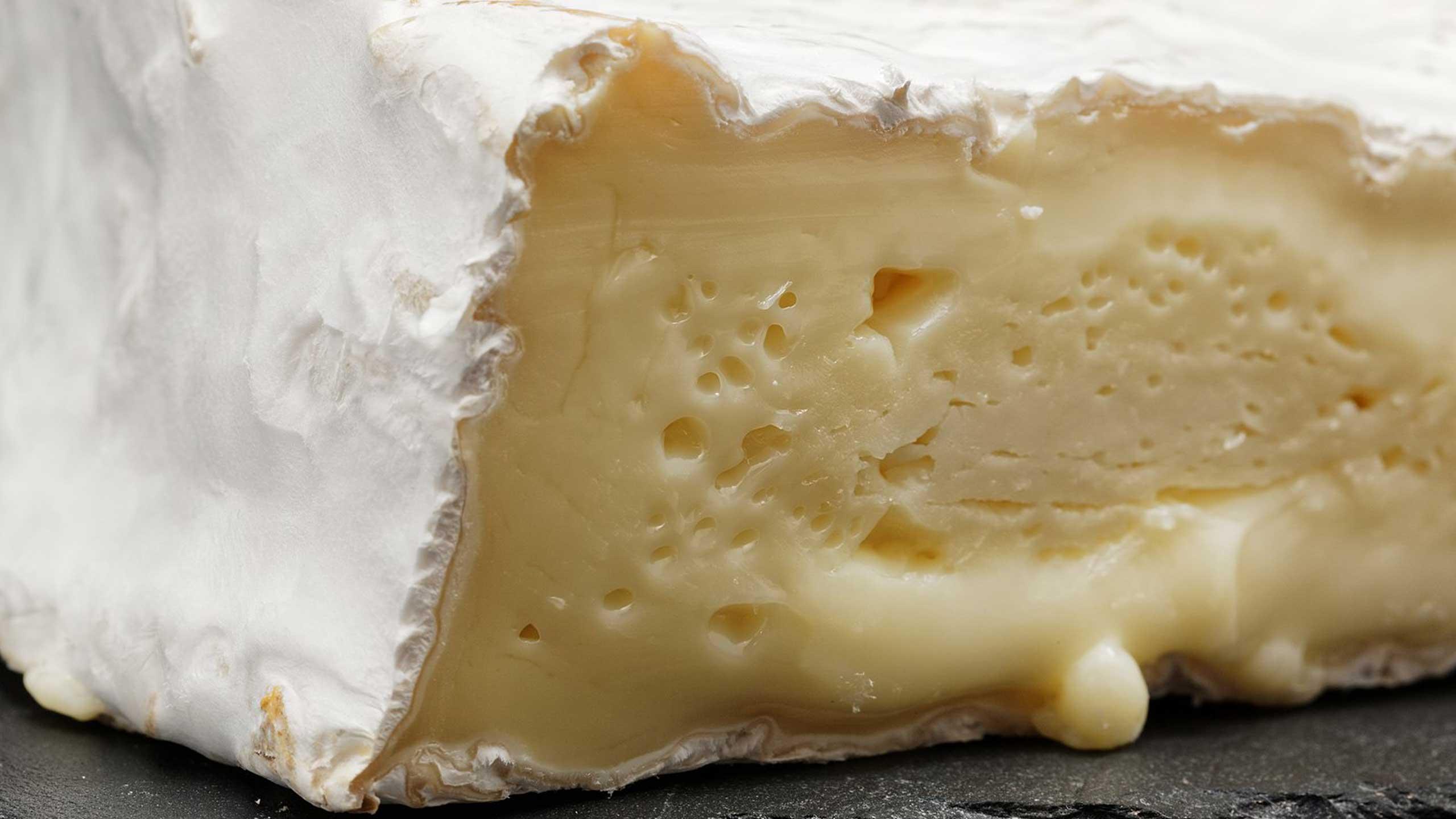 cera en el queso