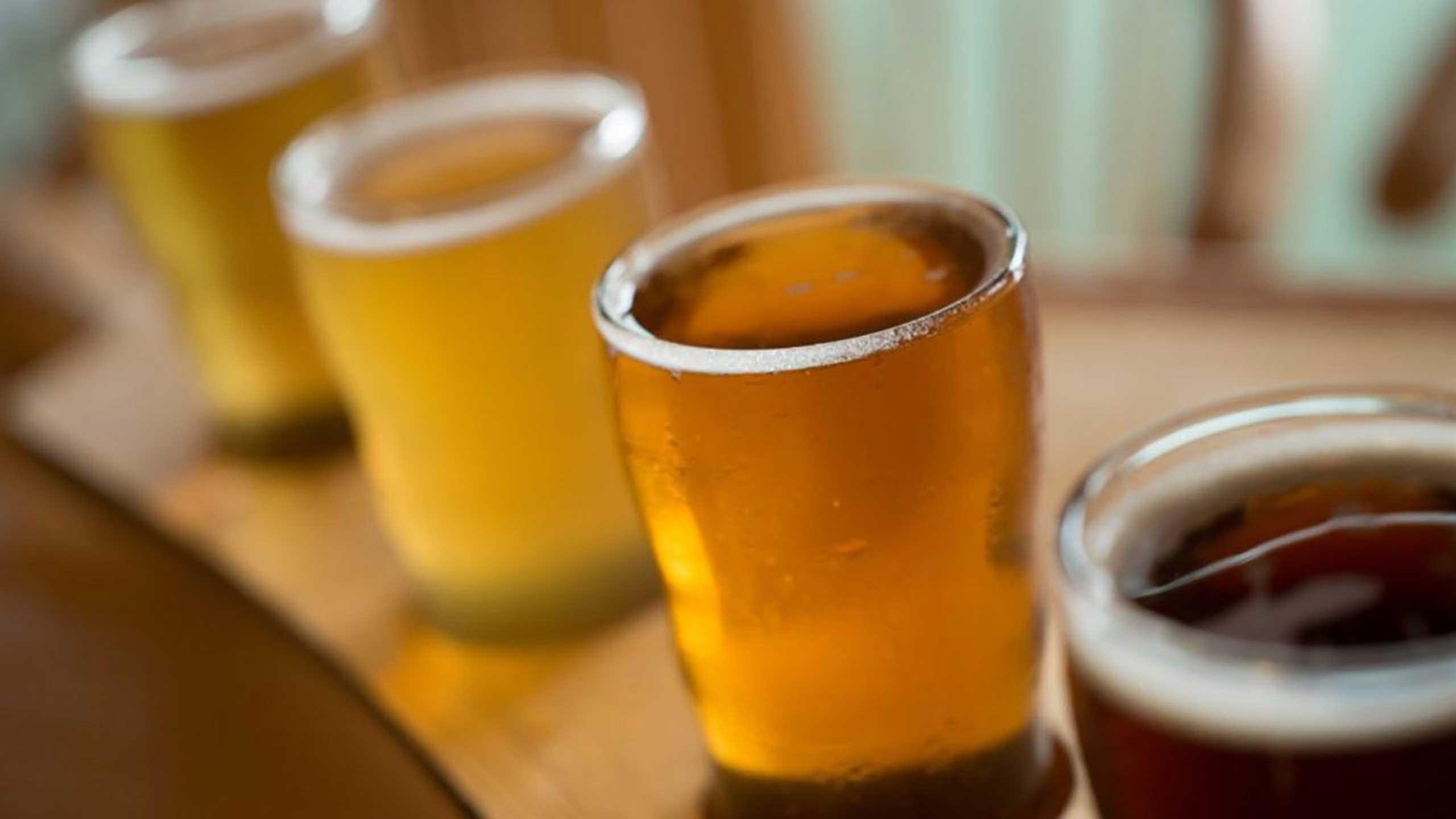 cerveza no engorda