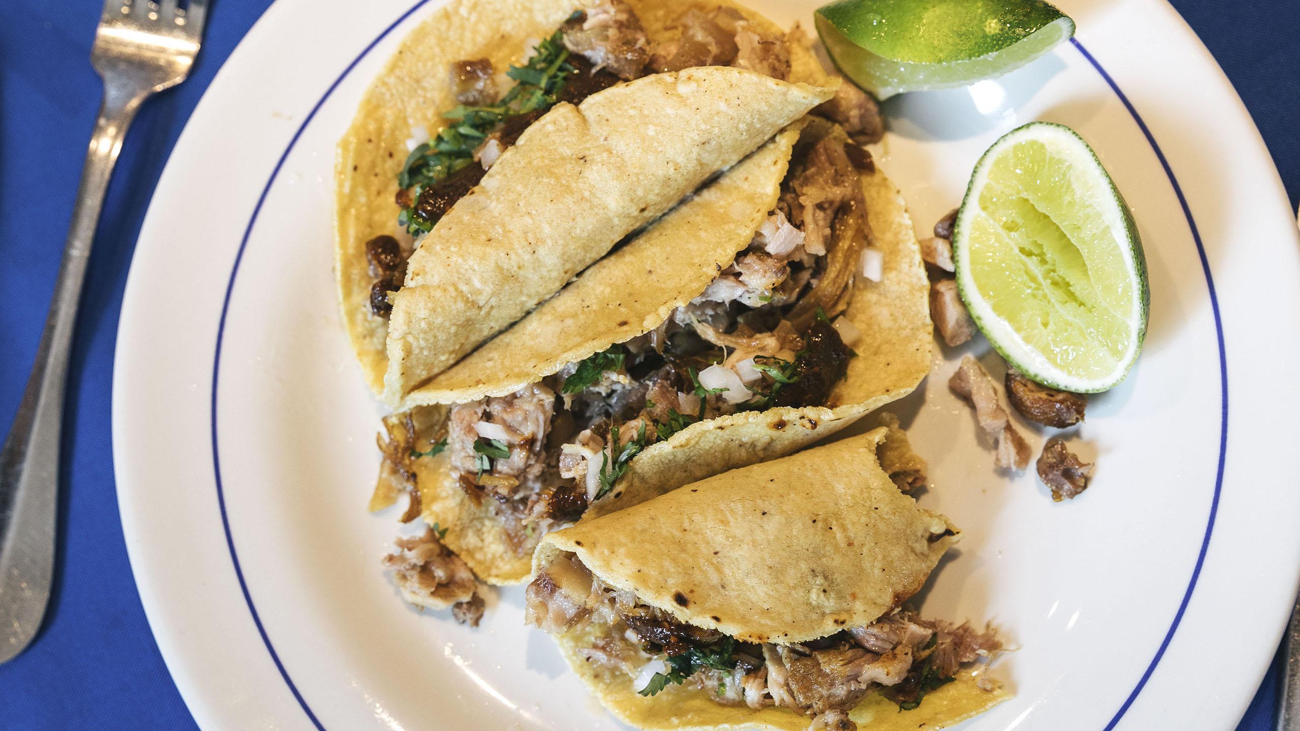 taco, taco de carnitas, El Bajío