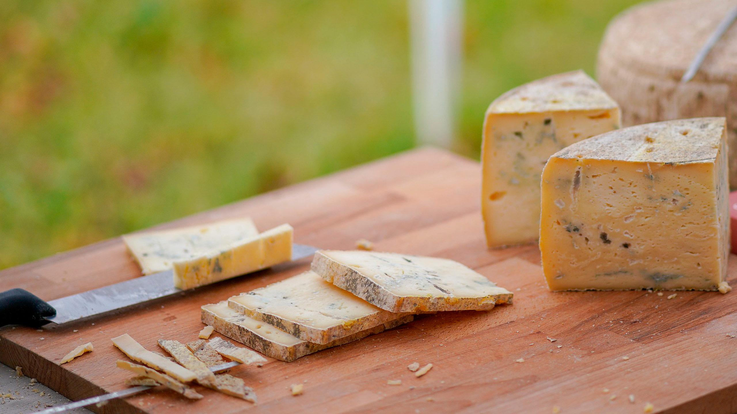 quesos intolerancia a la lactosa