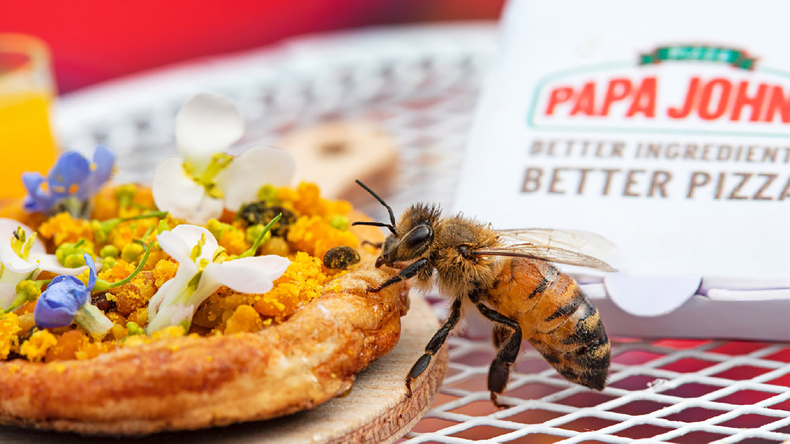 pizza, abejas, Papa John´s