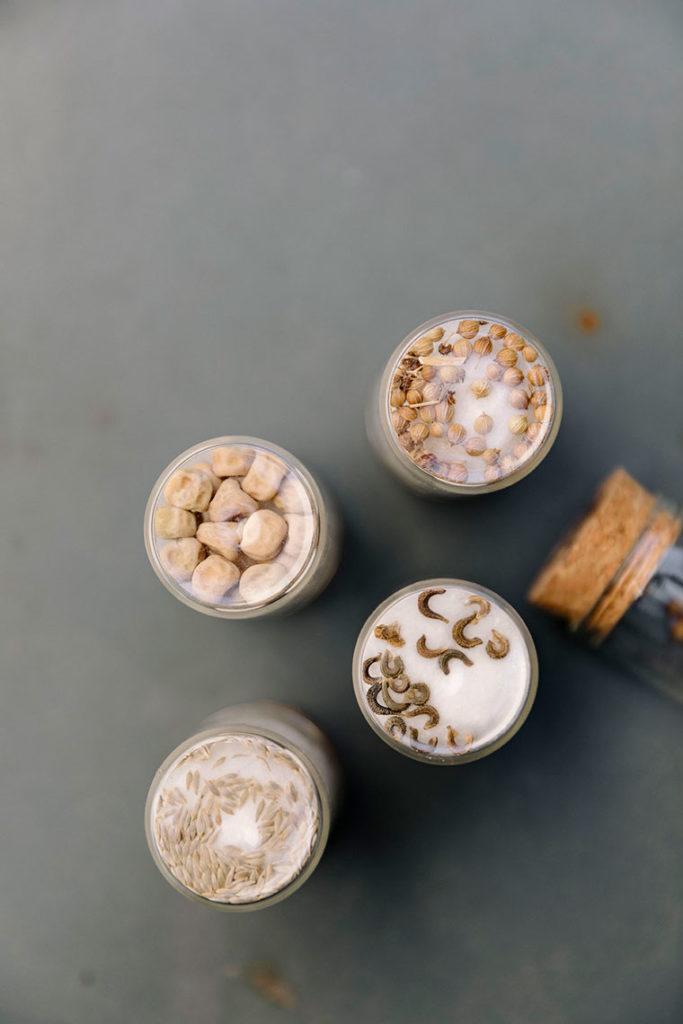 semillas en cápsula
