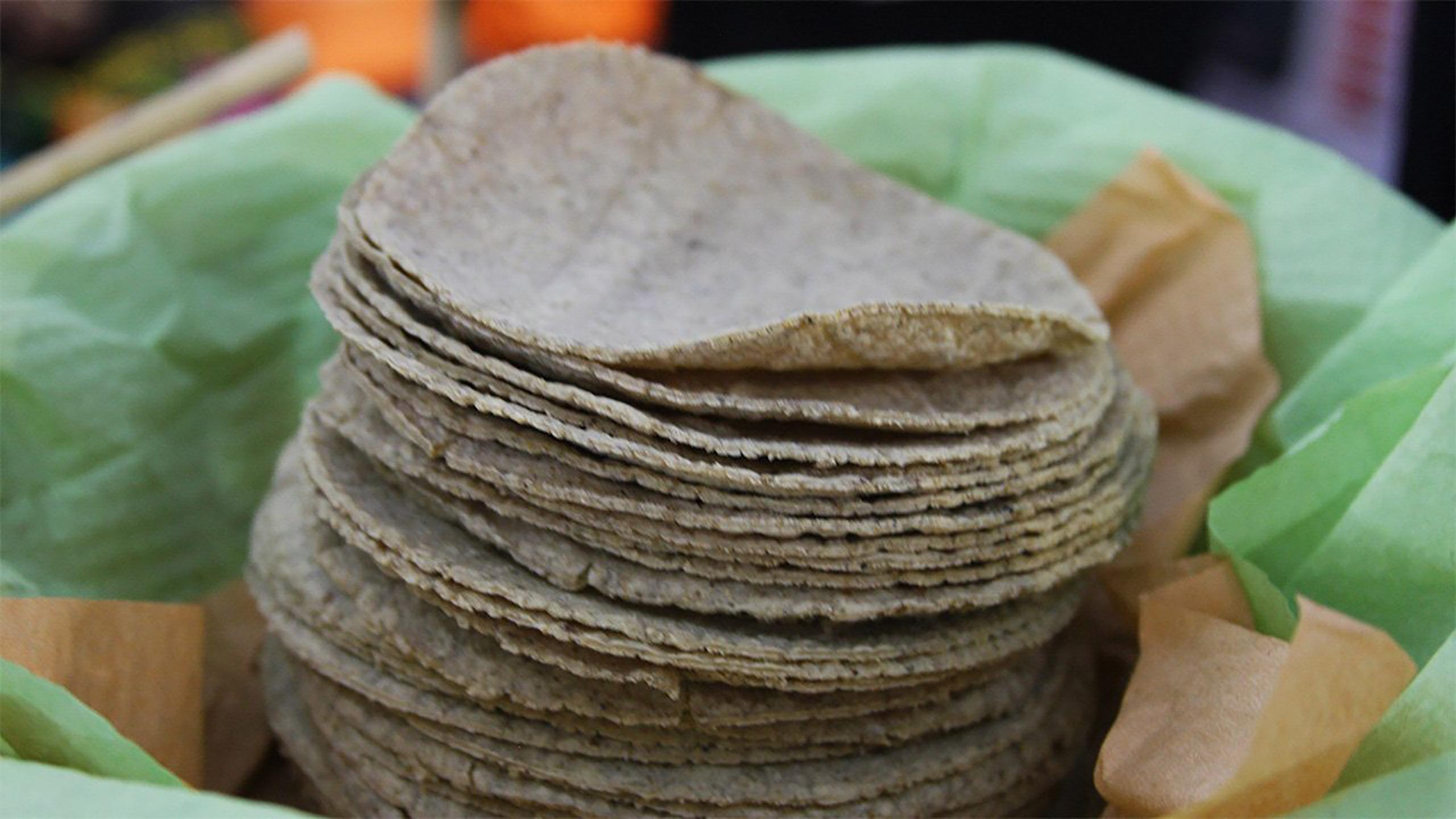kilo de tortilla, maíz, tortilla