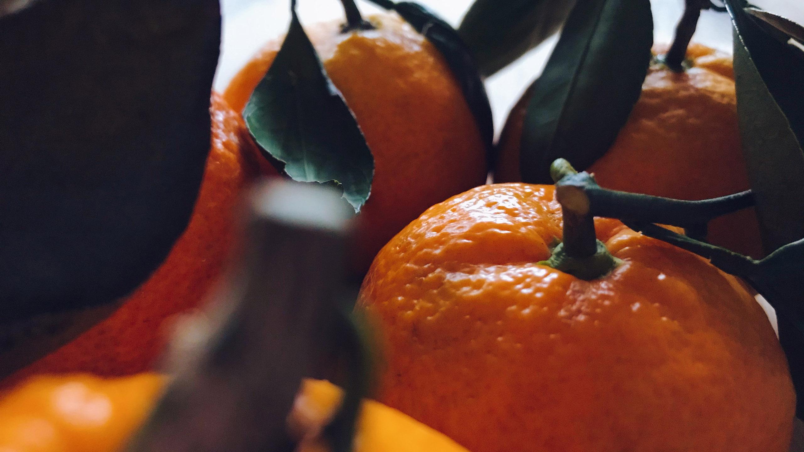 cítrico, mandarina