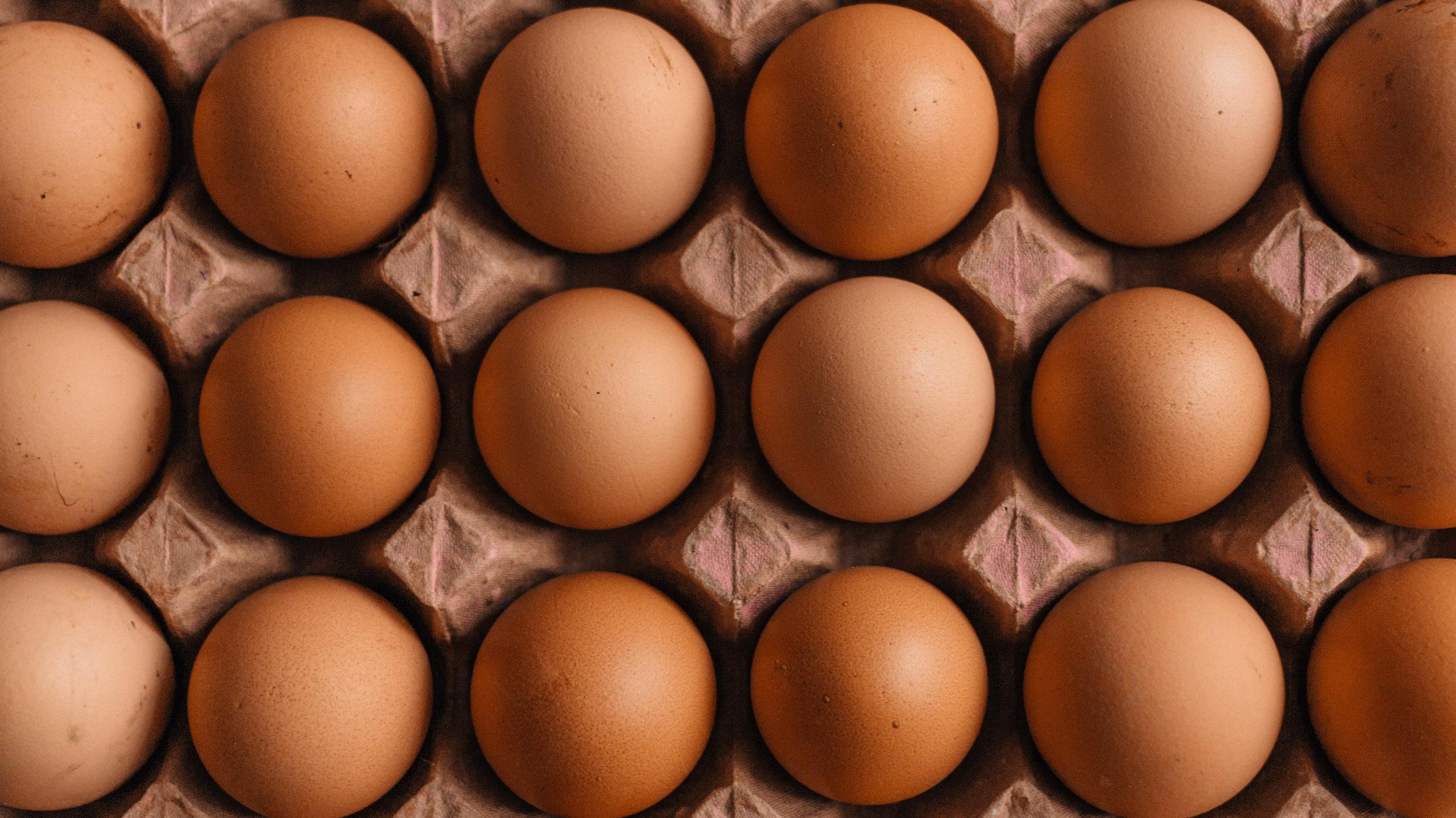 cartón de huevo, huevos, precio huevo