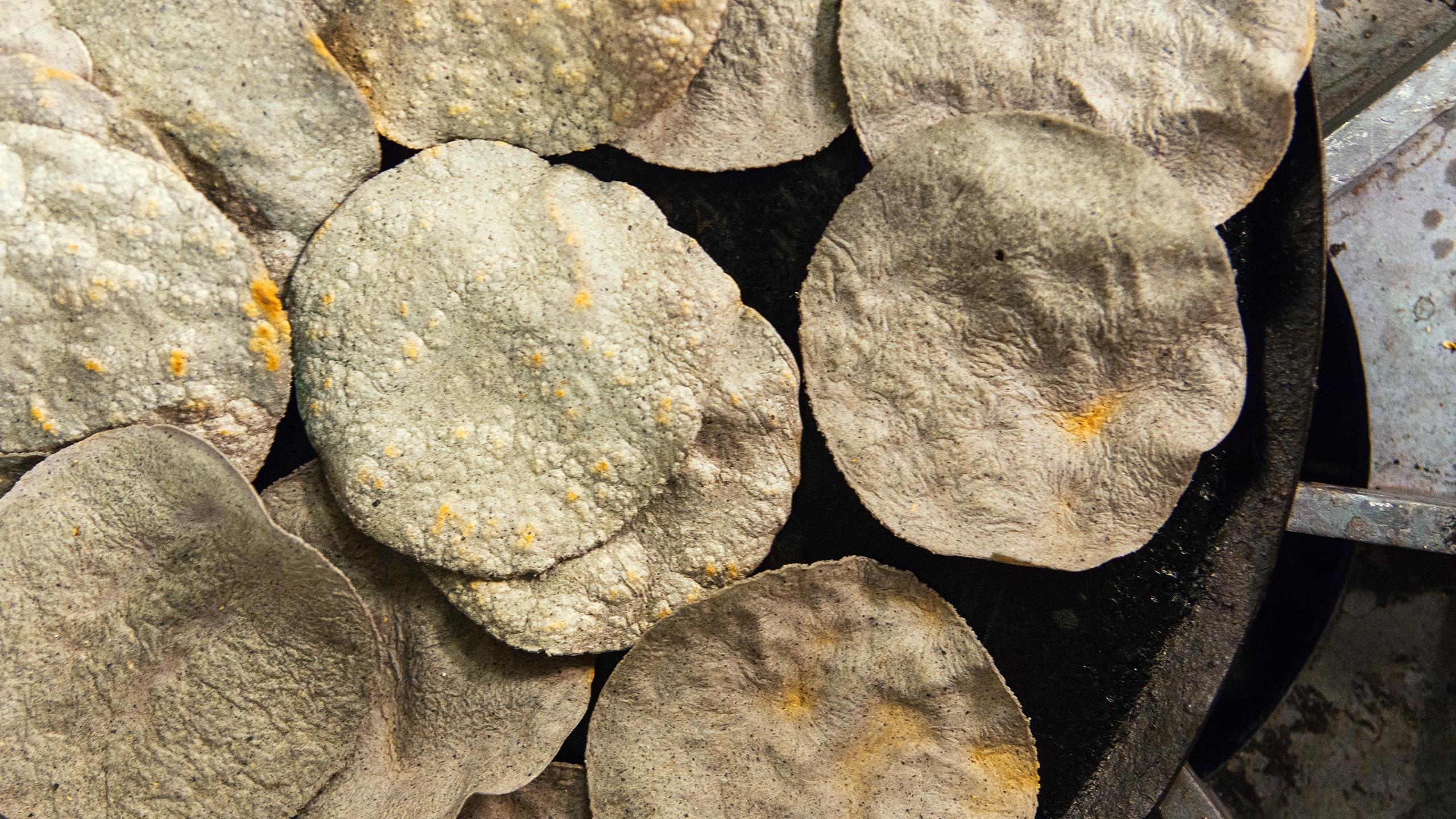 tortillas de nixtamal