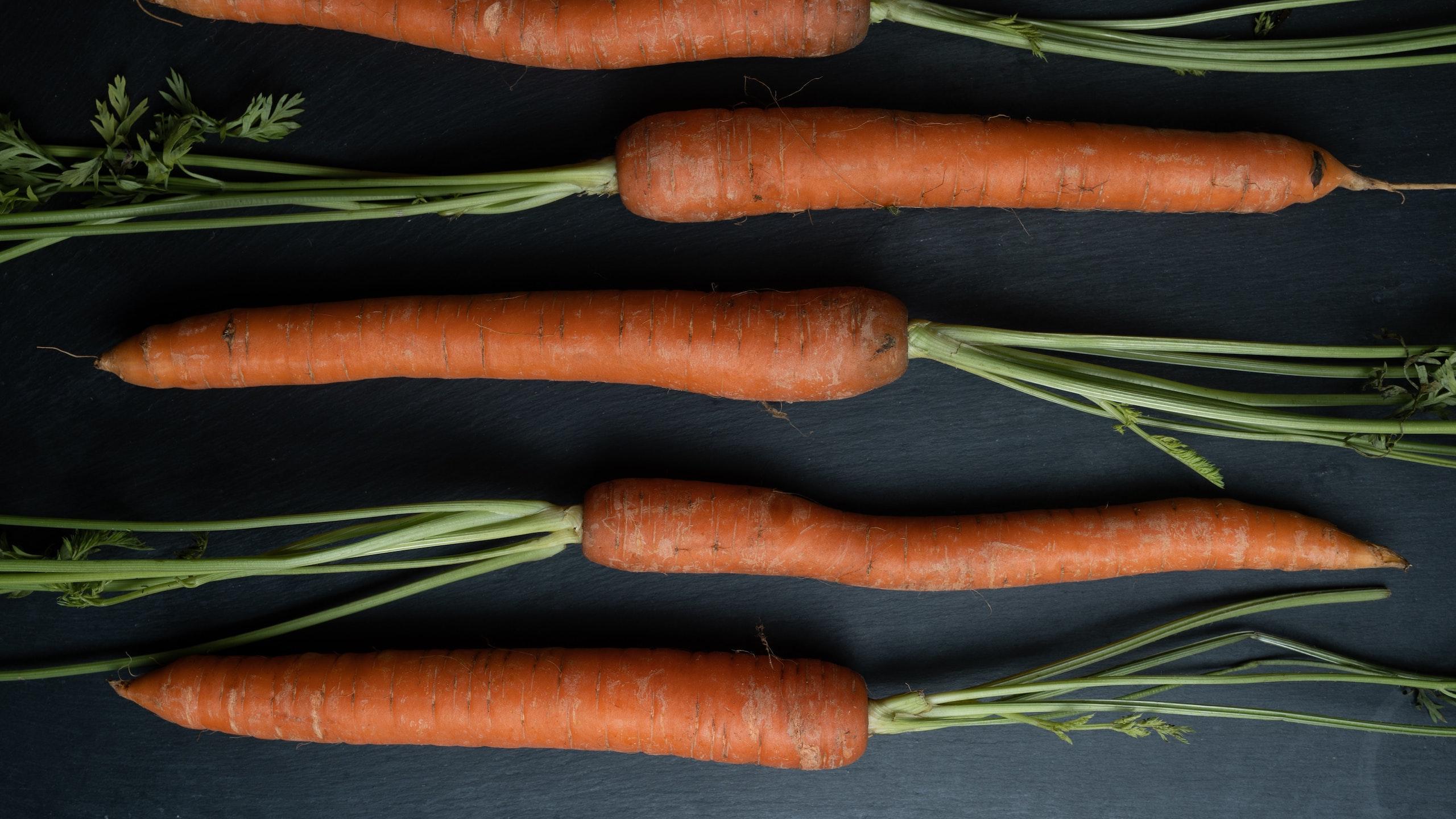 cultivar verduras en casa