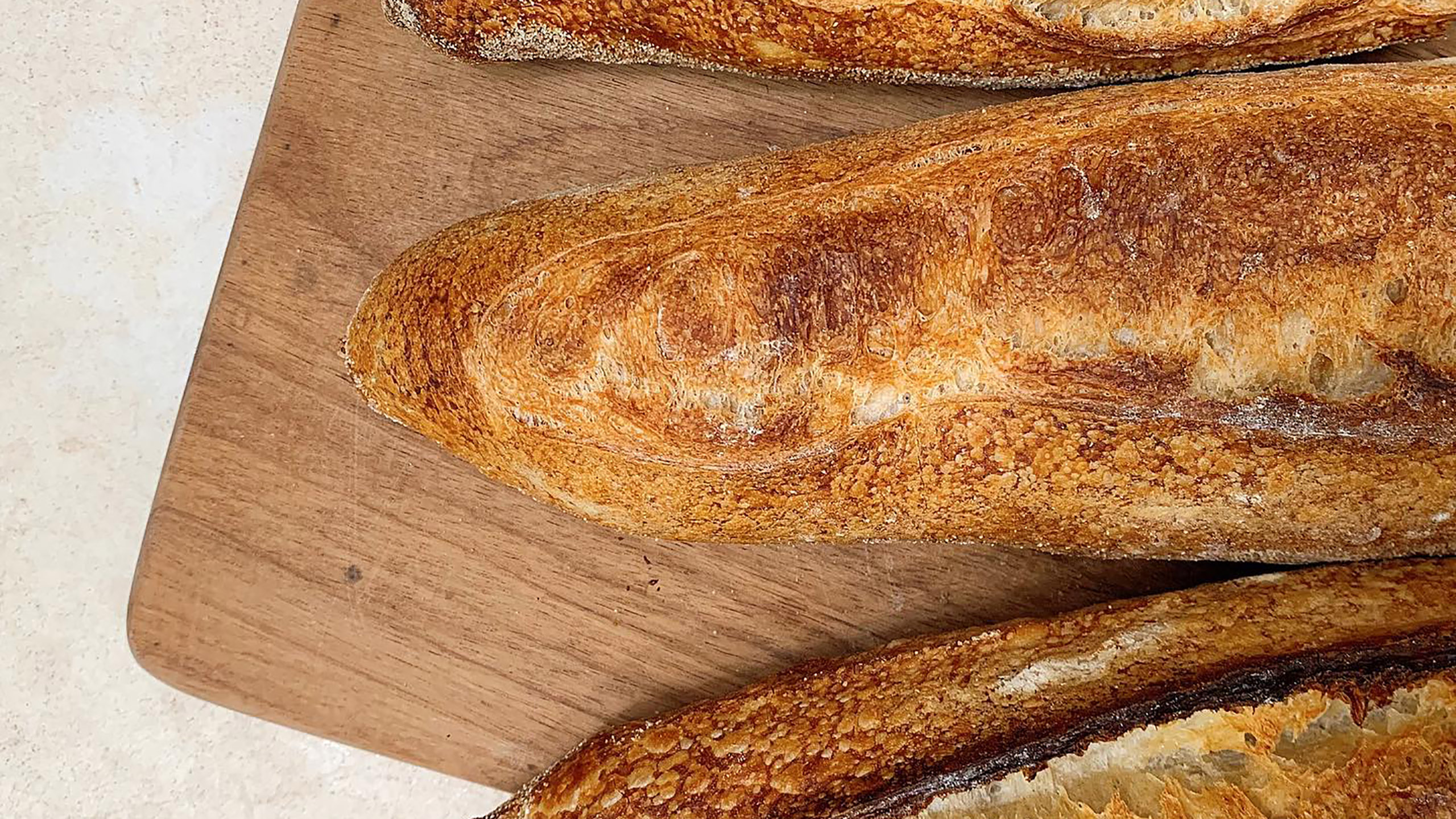 panadería, pan, masa, masa madre, panadería en mérida