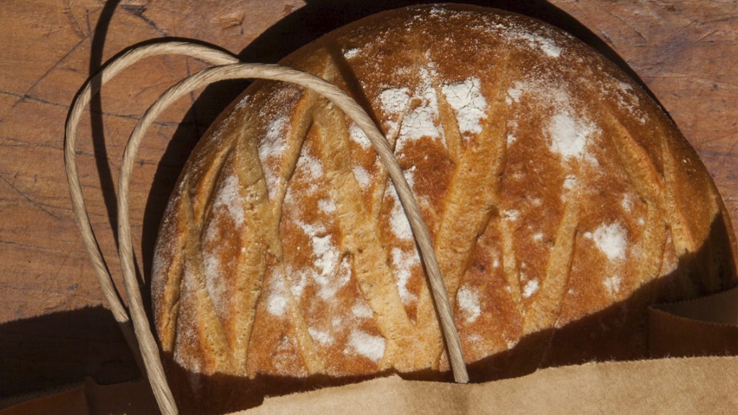Pan de pulque_rosetta