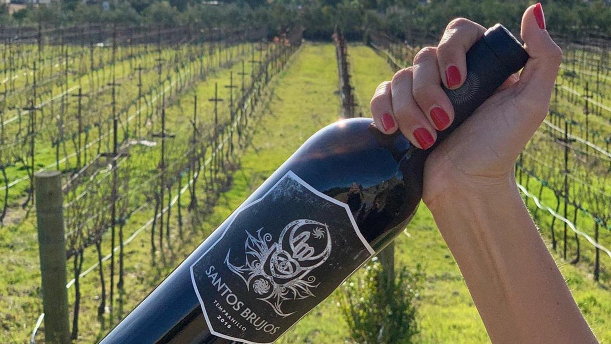Santos-Brujos, vino biodinamico, vino organico, primer vino certificado