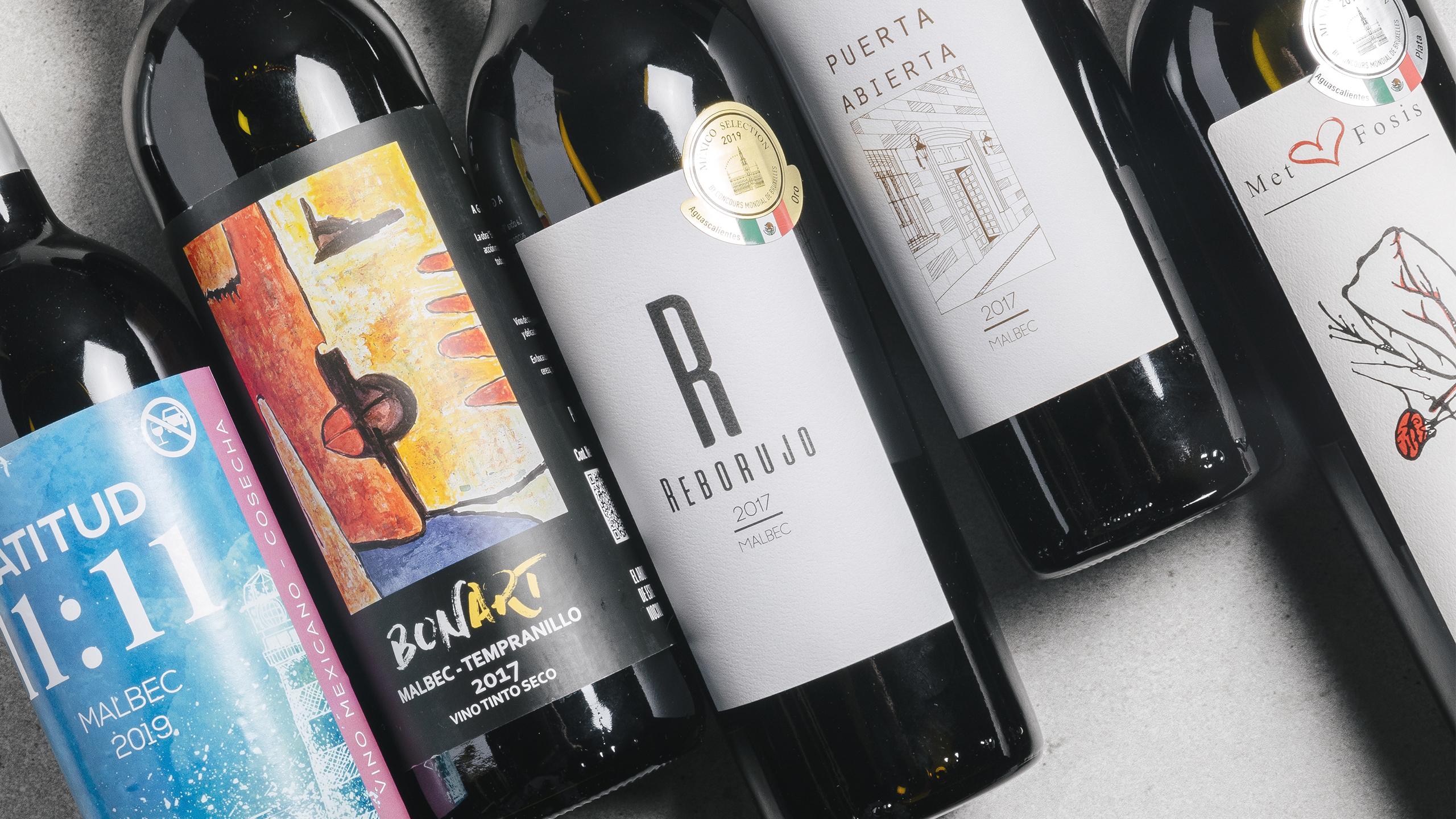 vinos-aguascalientes-malbec