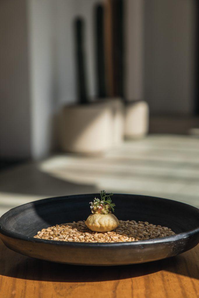 Restaurante-Sin-nombre-Comida-Vegetariana-Israel-Loyola_6