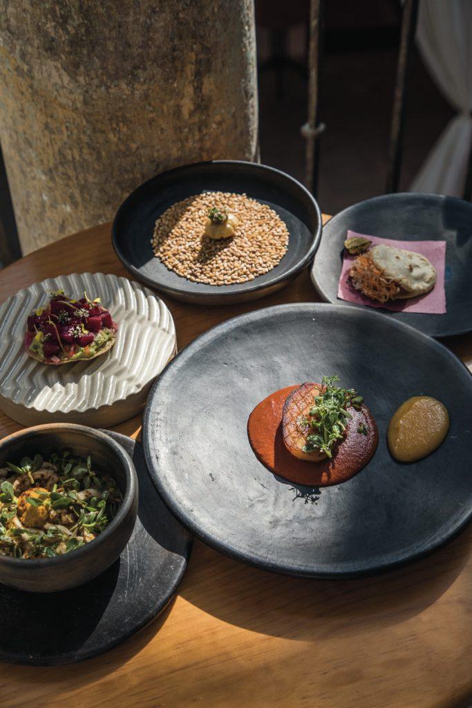 Restaurante-Sin-nombre-Comida-Vegetariana-Israel-Loyola_7