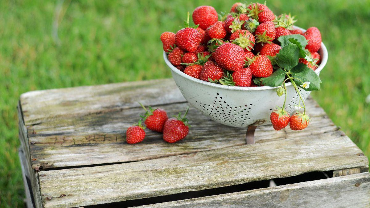 como-desinfectar-fresas