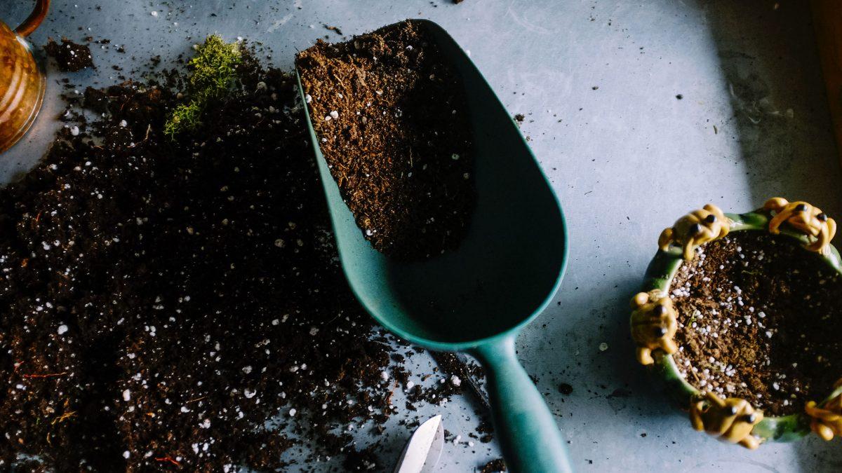 fertilizante-residuos-cafe