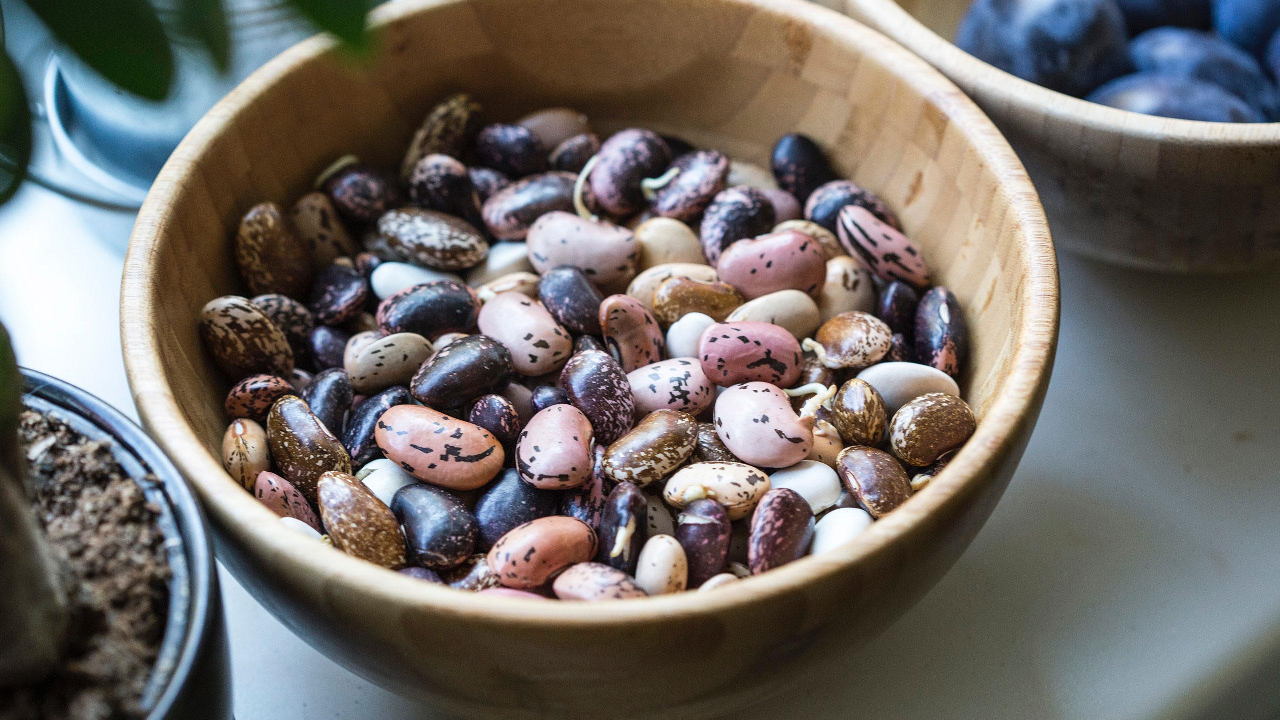 remojar-legumbres