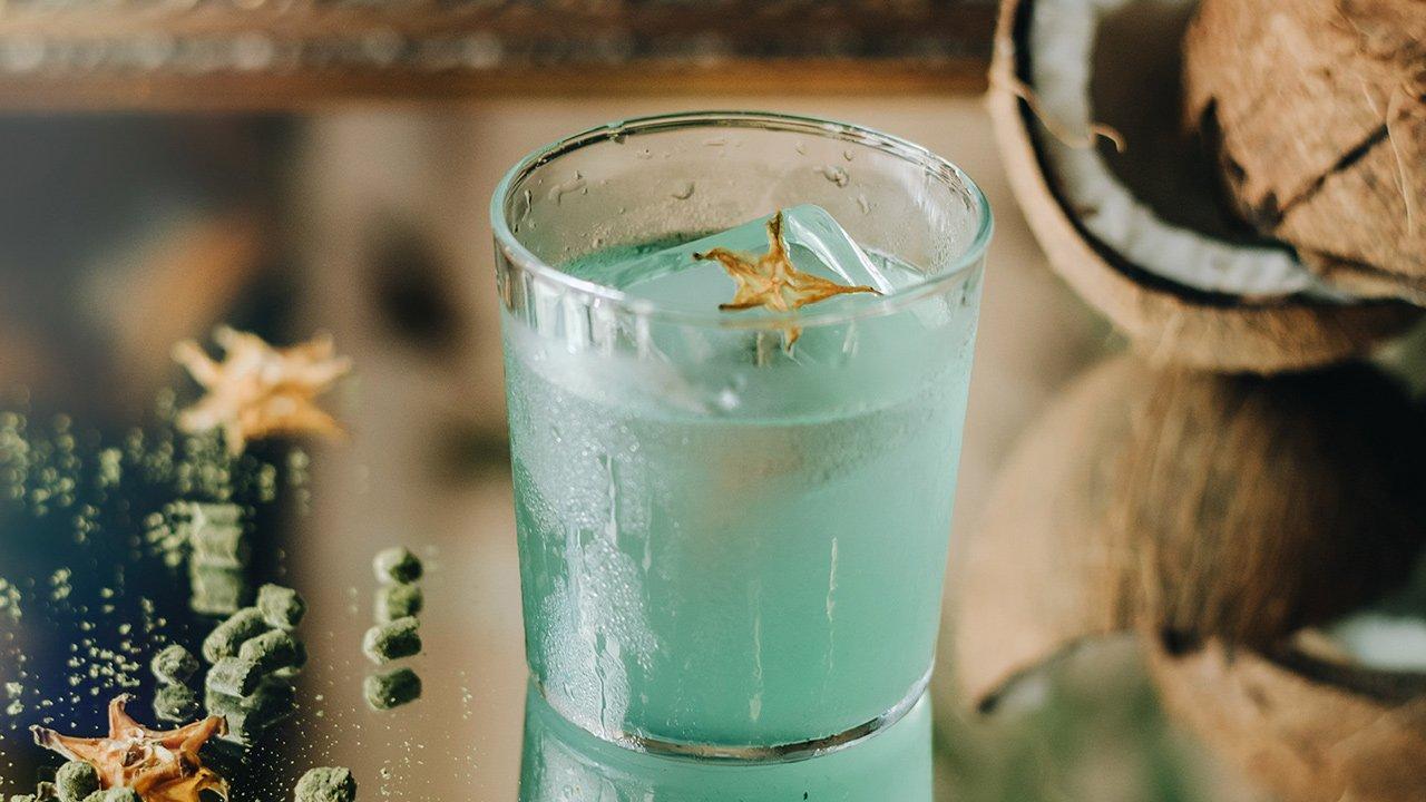 En el marco del Día Nacional del Mezcal te presentamos 5 drinks que no te puedes perder y usted mismo puede preparar.