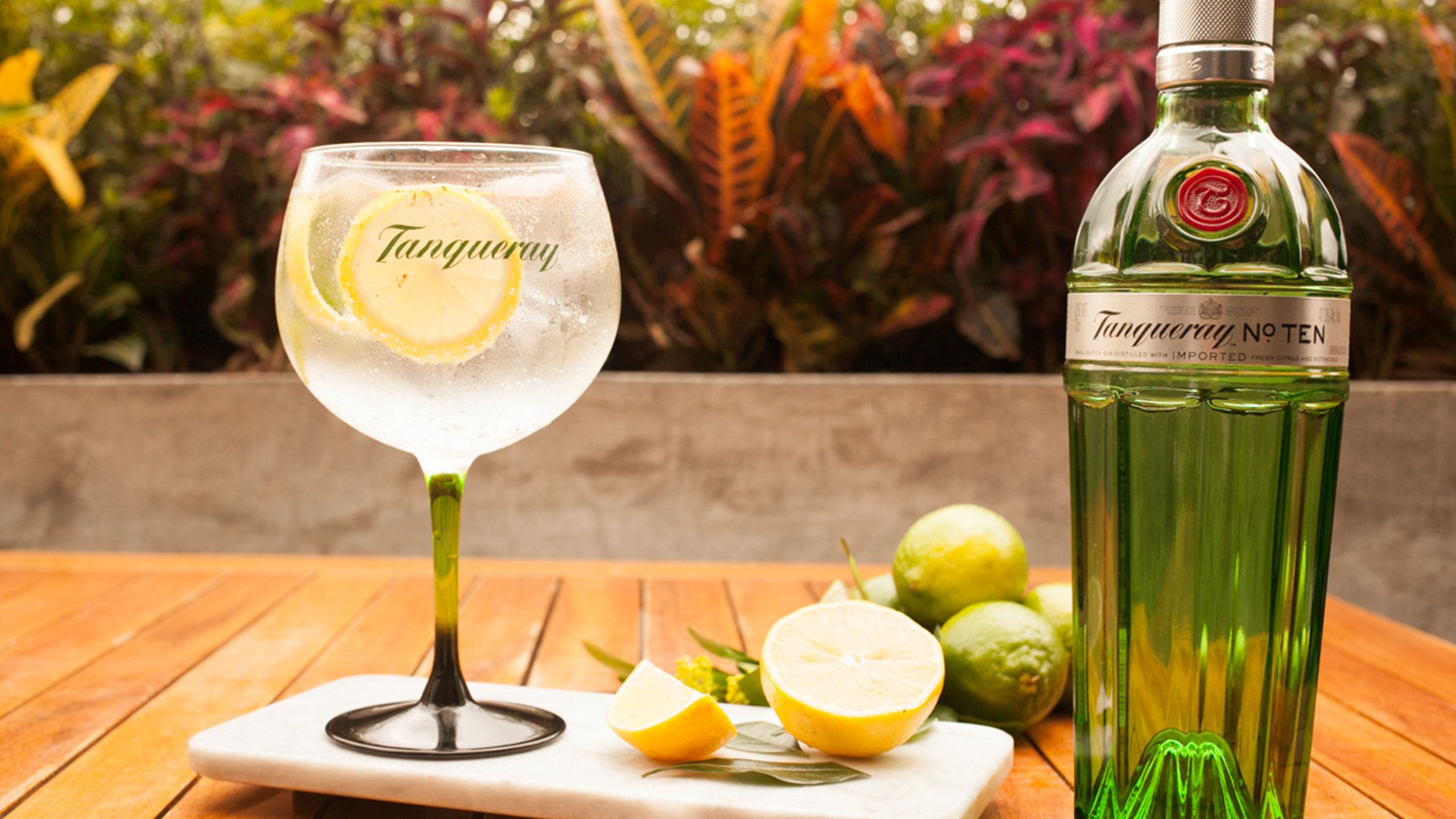 recetas-cocteles-gin-tonic