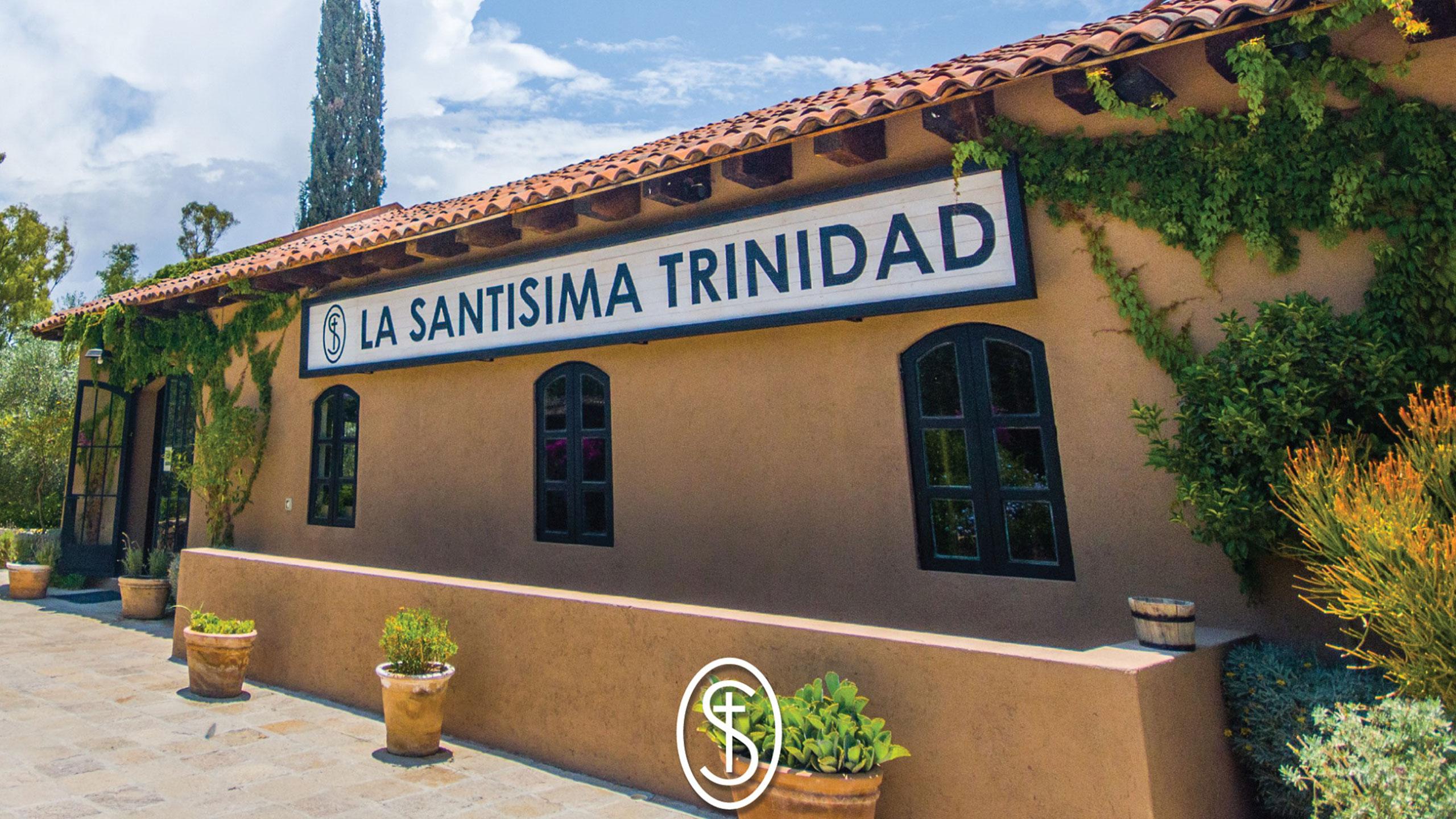 vinedos-la-santisima-trinidad